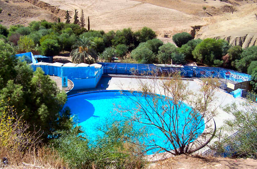 sidi_harazem_piscine