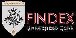 Logo findex
